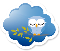 Sleeping owl on tree in a blue cloud.
